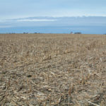 central-illinois-farm-land-for-sale_harvested-corn-field_loranda-group