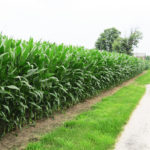central-indiana-lafayette-farmland-for-sale