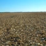east-central-illinois-champaign-selling-farmland-bachman-estate