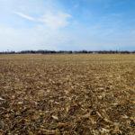 east-central-illinois-farm-for-sale-vyas-trust-farm