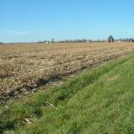 east-central-illinois-loda-bachman-estate-tillable-acreage
