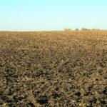 illinois-farm-land-for-sale-by-auction-crop-fields