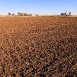 marshall-county-illinois-farm-auction_Paulsen-farm-fields-acreage