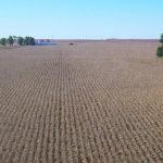 mclean-county-illinois-farm-land-brokered-sale_Duke-farm