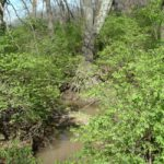 missouri-recreational-land-for-sale-public-auction_the-loranda-group