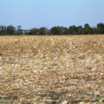 north-east-illinois-selling-genda-farm-tillable-acres