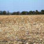north-east-illinois-selling-genda-farm-tillable-acres