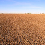 selling-illinois-farm-land-via-auction-expanse-of-tillable-acres_Paulsen-farm