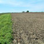 midwest-farm-land-sale_illinois-carter-trust_loranda-group