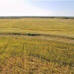 Polk S Field